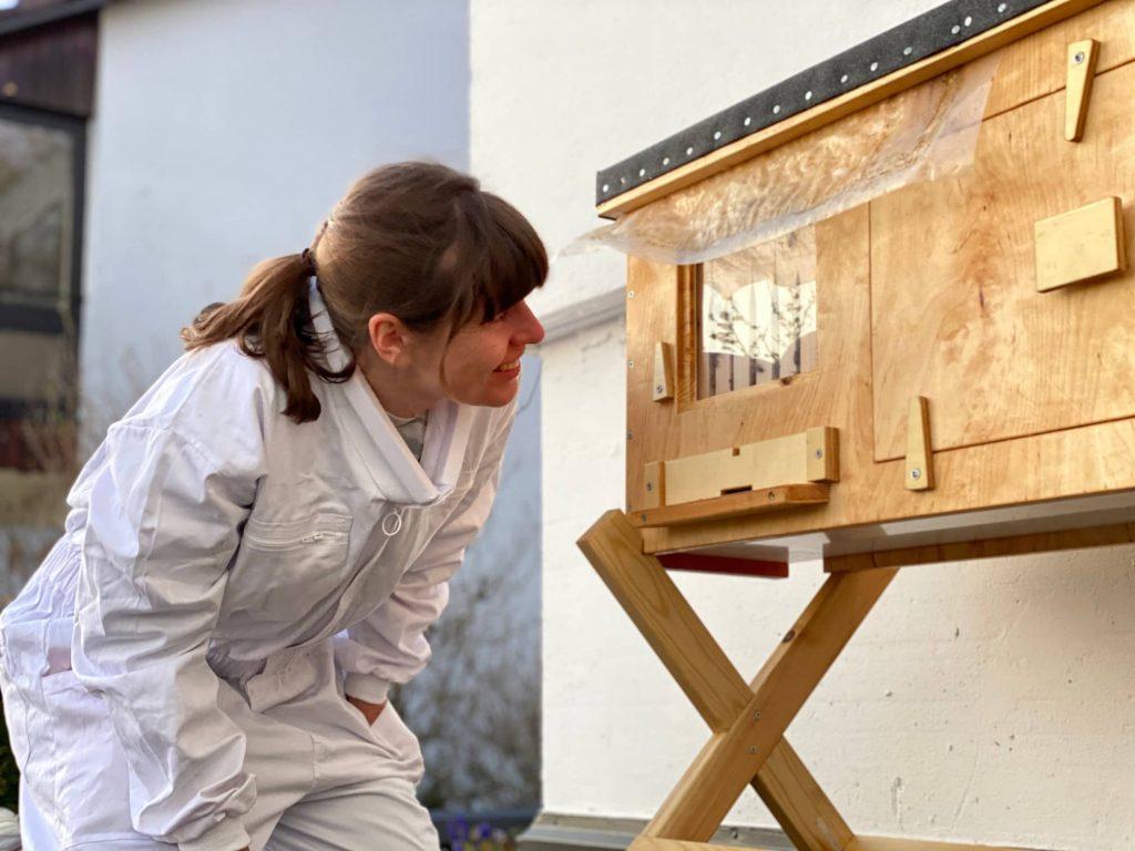 Bienen im Wohngebiet